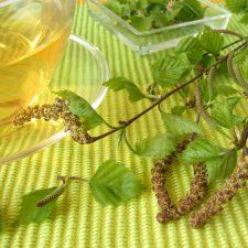 Náš tip: Vyzkoušejte čistící odvar z březových listů
