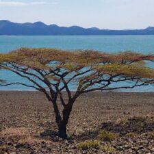 Ostrov, kde lidé mizí beze stopy