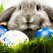 Pohanské kořeny křesťanských Velikonoc