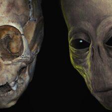 Chtěli faraóni připomínat tvarem hlavy mimozemšťany?